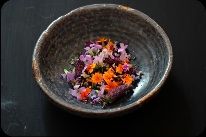 Blütenbutter mit Papadam | Arthurs Tochter kocht. von Astrid Paul. Der Blog für food, wine, travel & love!