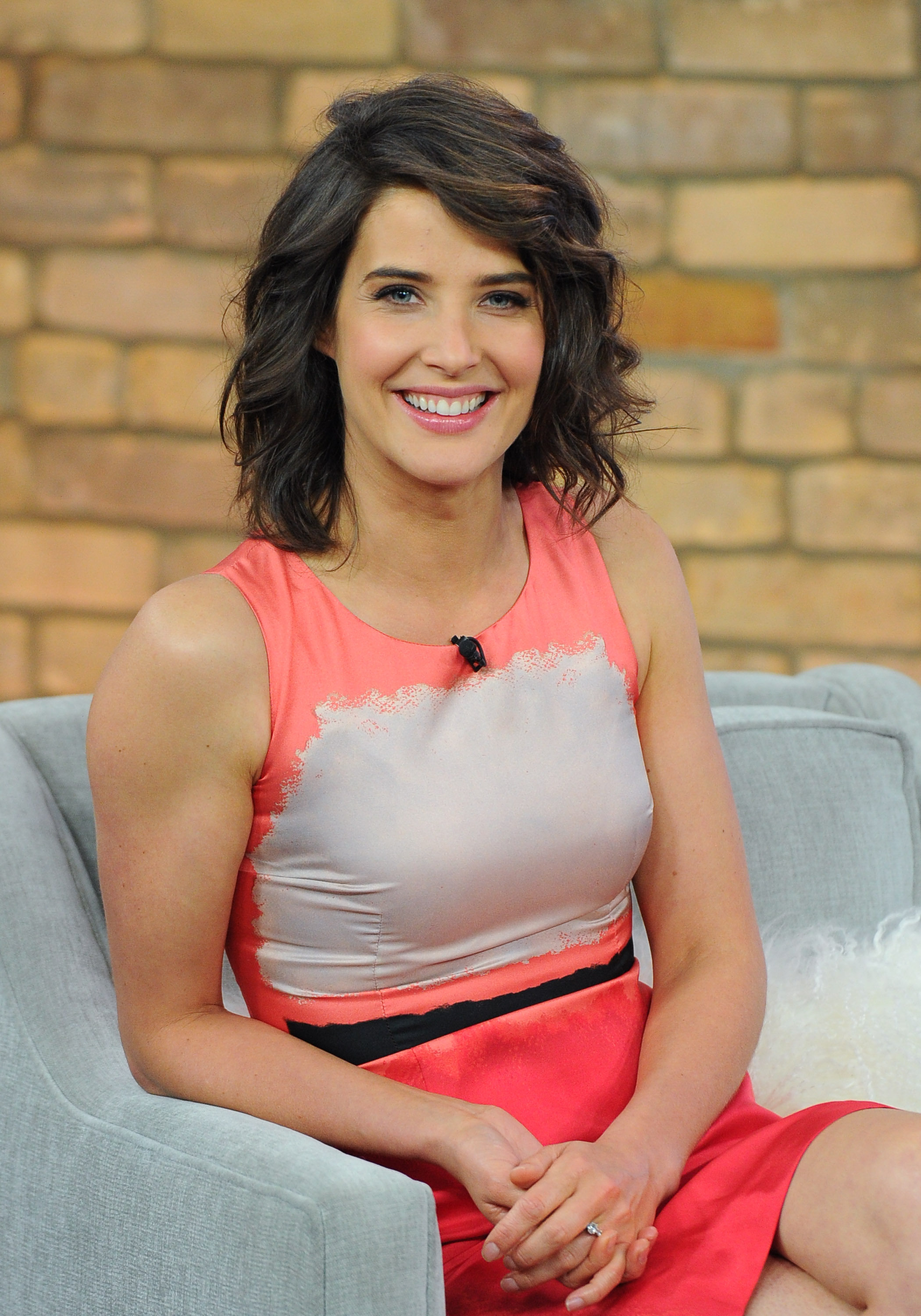 Cobie Smulders Pictures Gallery 14  Film Actresses-1851