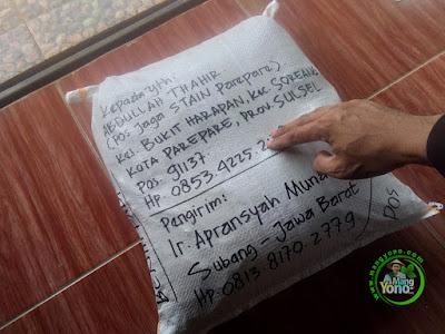 Benih Padi TRISAKTI pesanan ABDULLAH THAHIR   (Sesudah Packing)