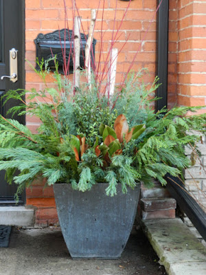 Toronto outdoor Christmas planter container by garden muses-not another Toronto gardening blog