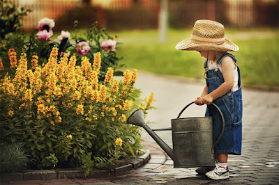 cultivate garden quote, cultivate garden, cultivate garden candide