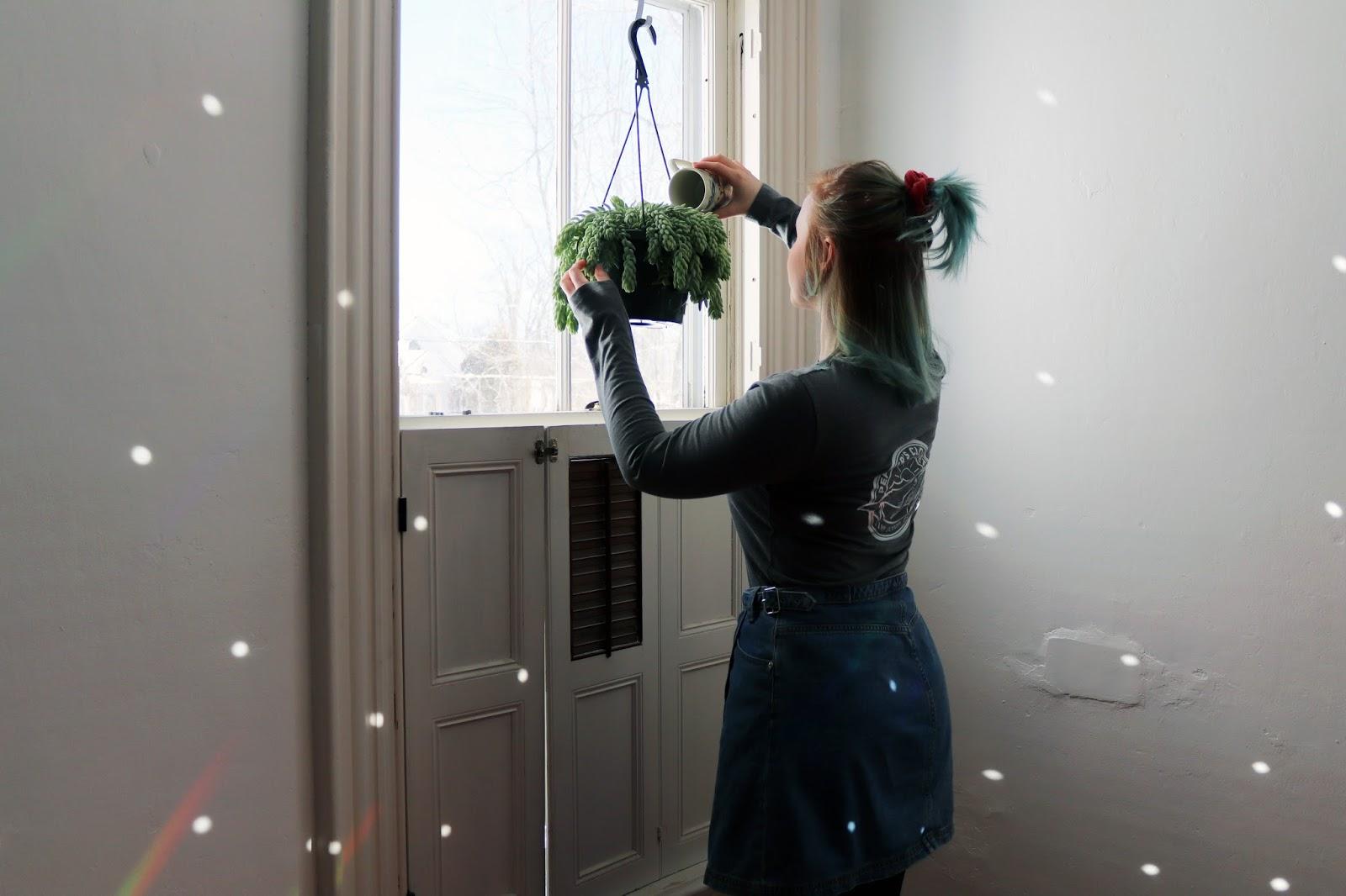 pepper's closet, poppyseeder