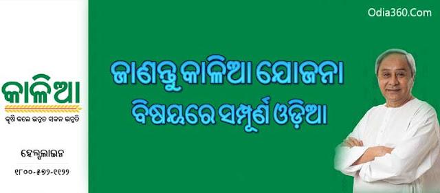 Know More Info Aabout Kalia Odisha Yojana in Odia (କାଳିଆ ଯୋଜନା) Contact Details, Helpline