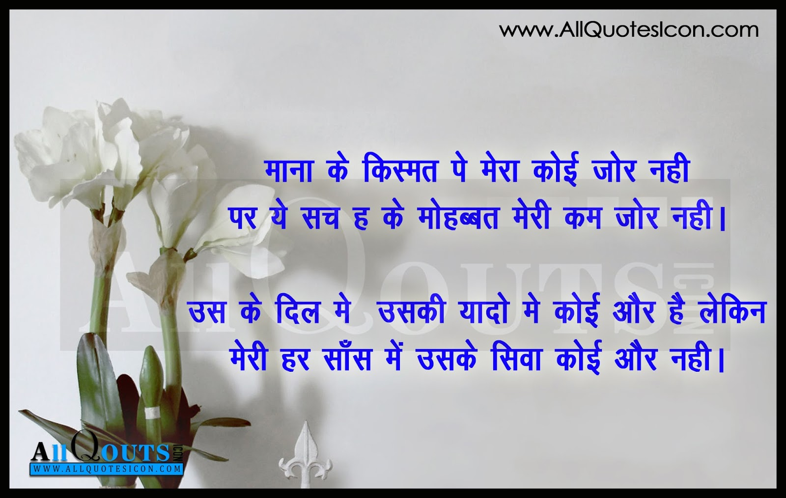 Best Hindi Friendship Quotes And Feelings Hd Wallpapers Best