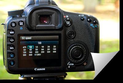 Fungsi dan Pengetian ISO Kamera Dslr
