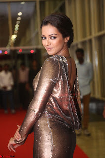 Actress Catherine Tresa in Golden Skin Tight Backless Gown at Gautam Nanda music launchi ~ Exclusive Celebrities Galleries 046.JPG
