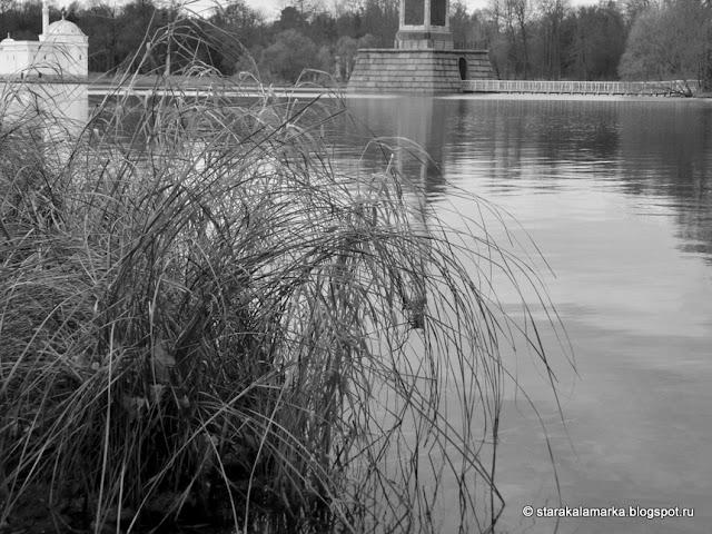 Осень в питере, Екатерининский парк, Екатерининский дворец, Пригороды Петербурга