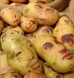 Como fazer uma pilha de batata ou de limão?