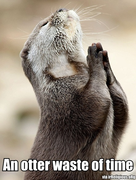 An otter waste of time - praying otter pun
