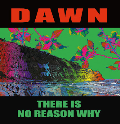 "DEBAUCH MOOD12枚目のリリースは、青森にて結成~東京にて活動を行うPOWER/MELODIOUS/DRIVING 正攻法STRAIGHT JAPANESE ALTERNATIVE PUNK  TRIO『DAWN-THERE IS NO REASON WHY(10"")』"