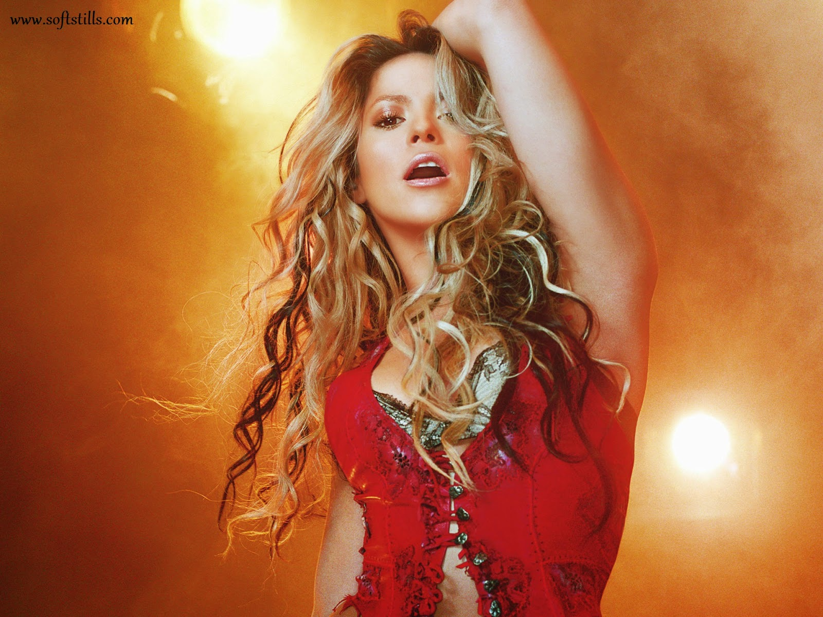 http://www.softstills.com/2014/11/hot-shakira-hd-wallpapers.html