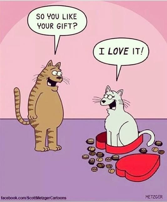 So you like your gift? I love it!