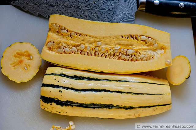 how to cut up a delicata squash