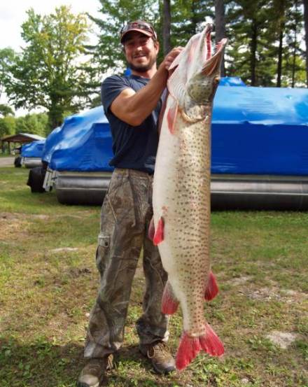 Big Fishes of the World: MUSKIE (Esox masquinongy)
