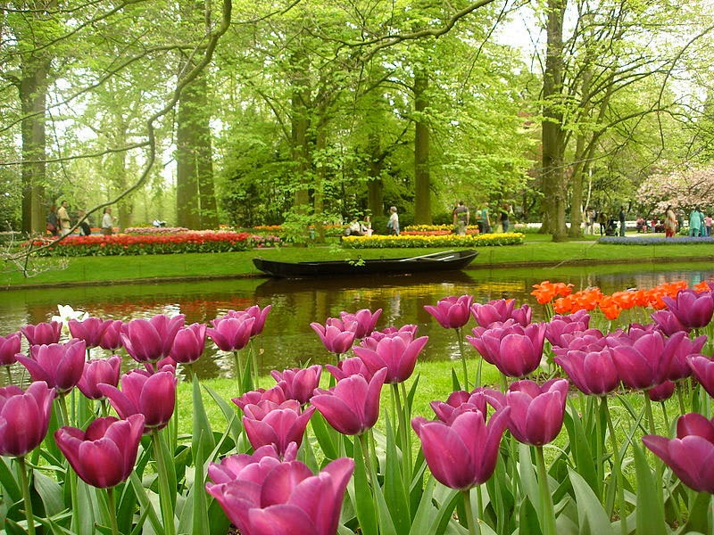 1. Keukenhof Gardens, The Netherlands - 5 Incredible Gardens That Will Blow Your Mind