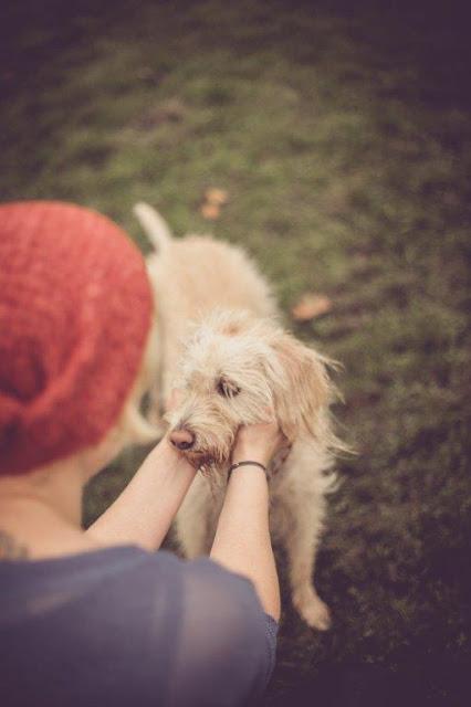 Fräuleins wunderbare Welt Blog über den Alltag mit Depressionen und Hund