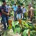 Produtores rurais de SAJ participam de visita técnica em São Felipe