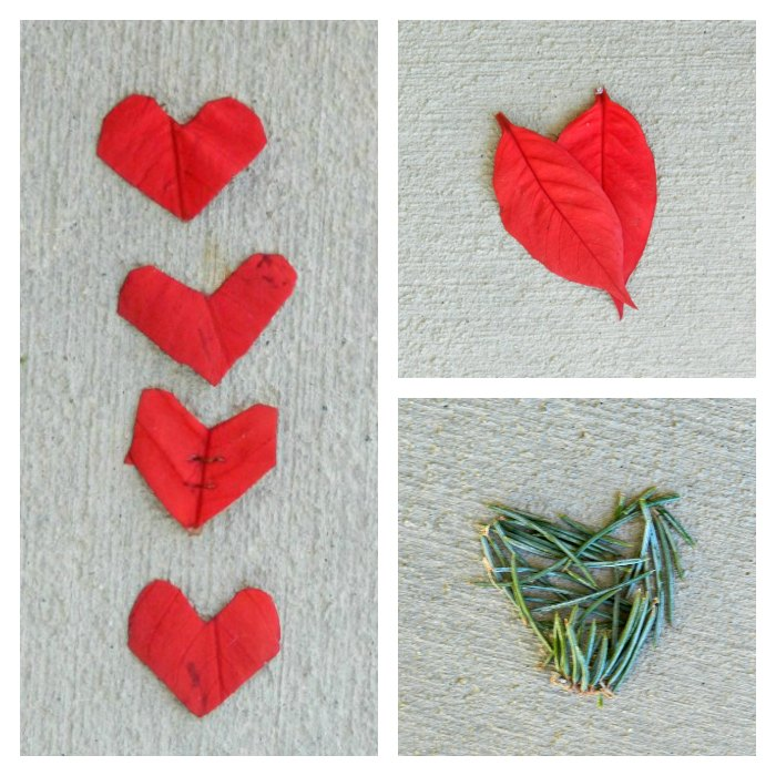 Valentine's Photography- nature hearts by Elise Engh: growcreative