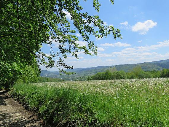 Wzgórza Lanckorońskie