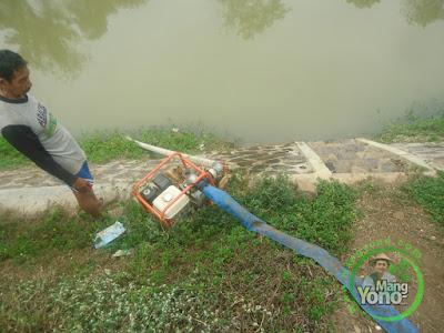 FOTO 2 : Pompanisasi dari sungai