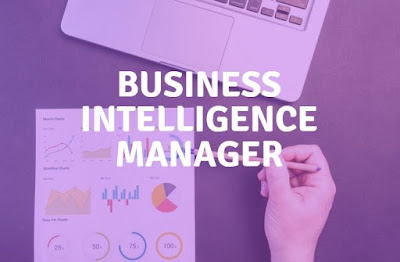 Business Intelligence Manager Job Search