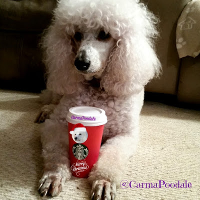 Carma Poodale with her Starbucks red cup