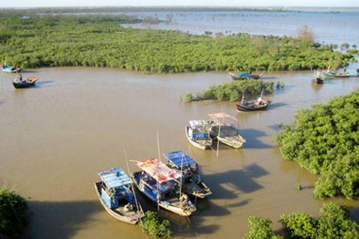 Khám phá vùng lõi khu dự trữ sinh quyển thế giới ở cửa sông Hồng -2