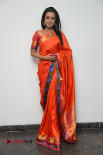 Actress Catherine Tresa Latest Pictures in Silk Saree  0078