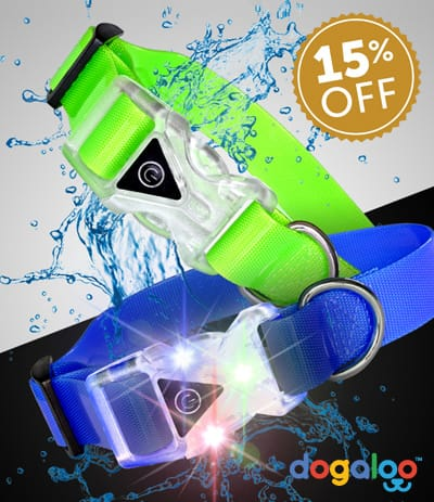 LIGHT UP WATERPROOF COLLARS