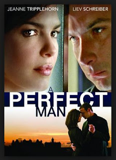 Download Film A Perfect Man ( 2013 ) WEBDL 720p