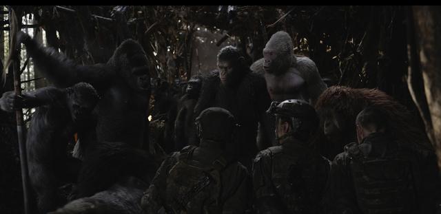 Cuộc Chiến Của Hành Tinh Khỉ - Ảnh 2
