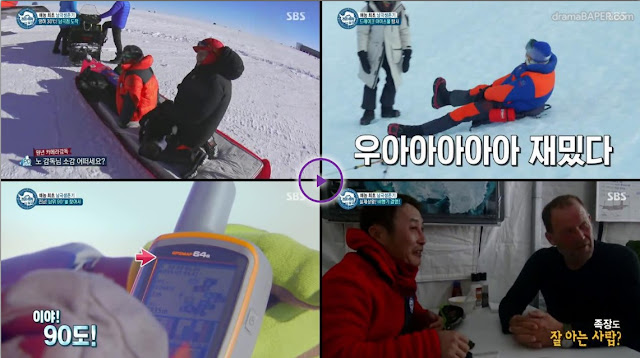 Law of The Jungle in Antartica Episode 312 Subtitle Indonesia
