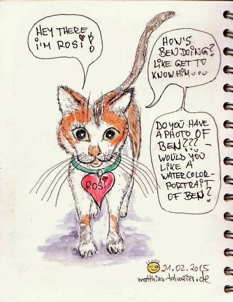 Katzen flirten