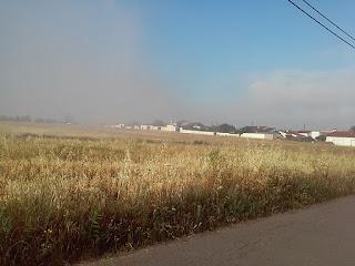 Poluição em Fortes