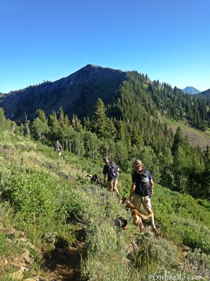 Hiking to Clayton Peak via Guardsmans Pass