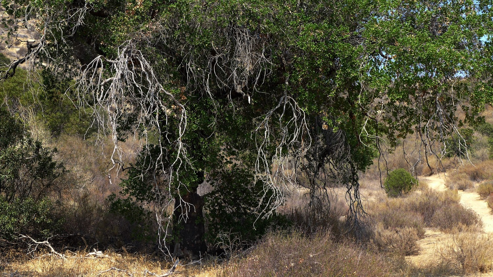 Extremely Powerful - Corriganville Park, Simi Valley, CA