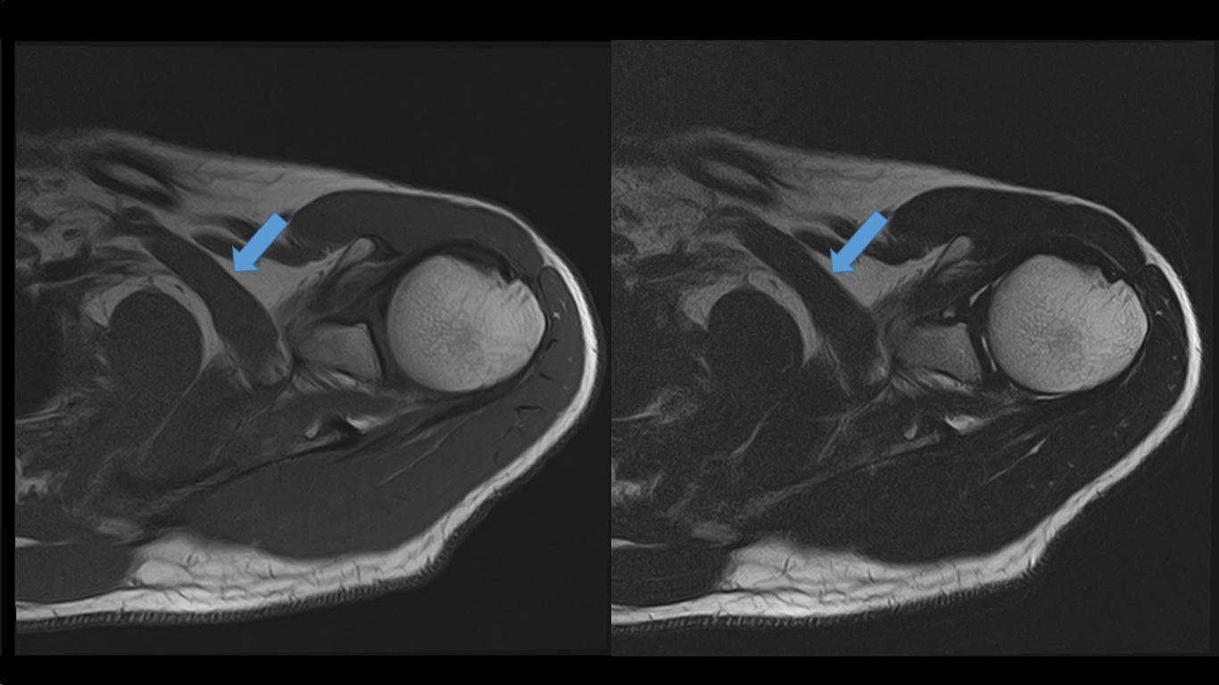 Ultimate Radiology : December 2016