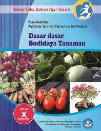 Buku Paket Materi Dasar-dasar Budidaya Tanaman 1 Kelas X SMK Kurikulum 2013