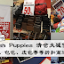 Hush Puppies 清仓大减价!服装、包包、皮包折扣高达70%!