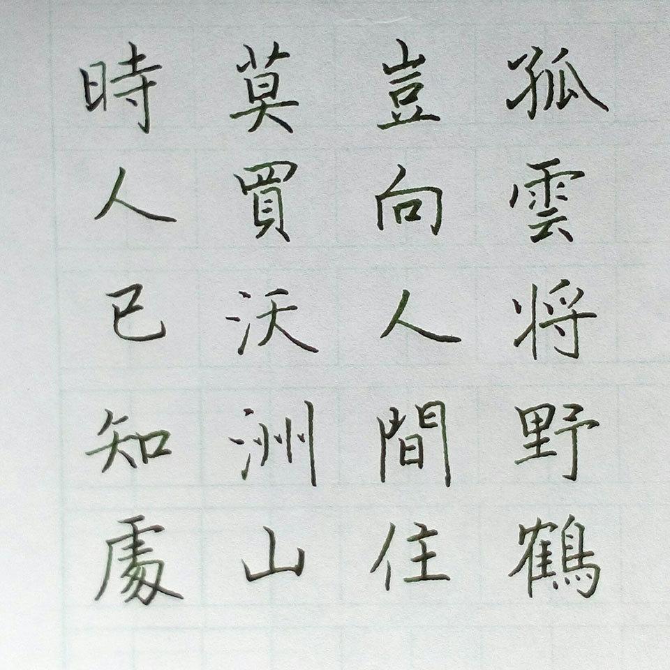 萬寶龍鋼筆字硬筆書法作品(一):破釜沉舟。真善美