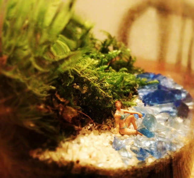 Twig Terrariums Archives On The Real