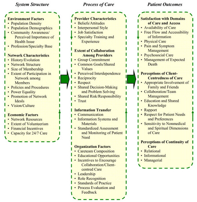 Conceptual framework of an integrated palliative care networks