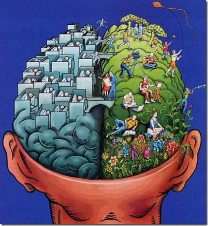 psicologia medio ambiente