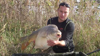 Jesienne zmagania - catch report #4