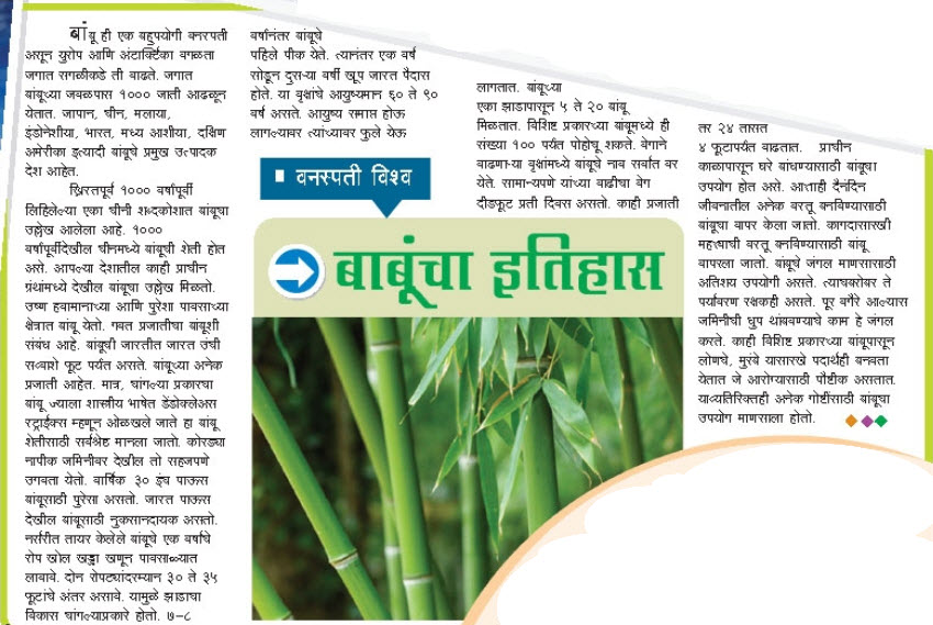 Essay on coconut tree in marathi language