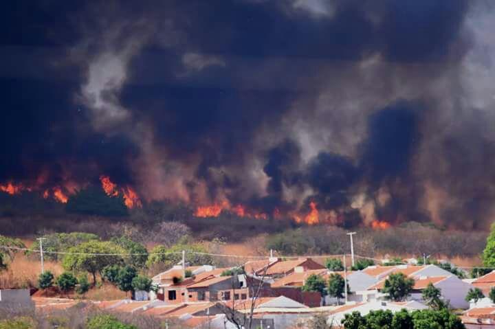 Resultado de imagem para queimada na serra da ibiapaba