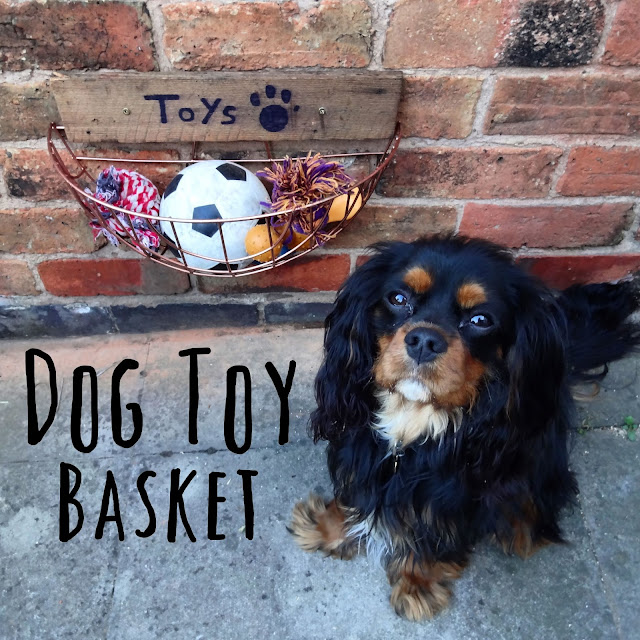 How to Make a Toy Basket for Dogs