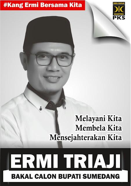Banner Ermi