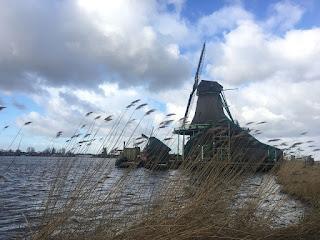 Op de eerste maandag van de krokusvakantie gingen de meisjes van Meridiaan op dagtrip naar Rotterdam, Amsterdam en Zaandam.