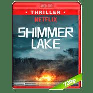 Lago Shimmer (2017) WEBRip 720p Audio Dual Latino-Ingles
